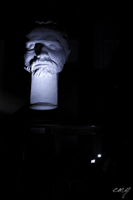 lyon_sur_crime_part_1_musee_testut_latarjet_24_octobre_2014_by_emy_chaoschildren-49